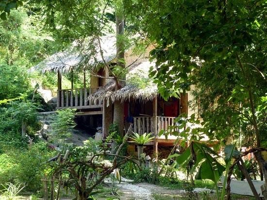 Prachtige jungle in Palawan